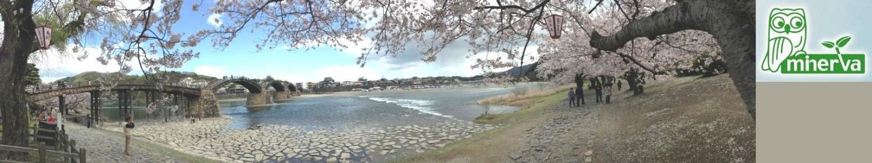 環境ミネルバジャパン